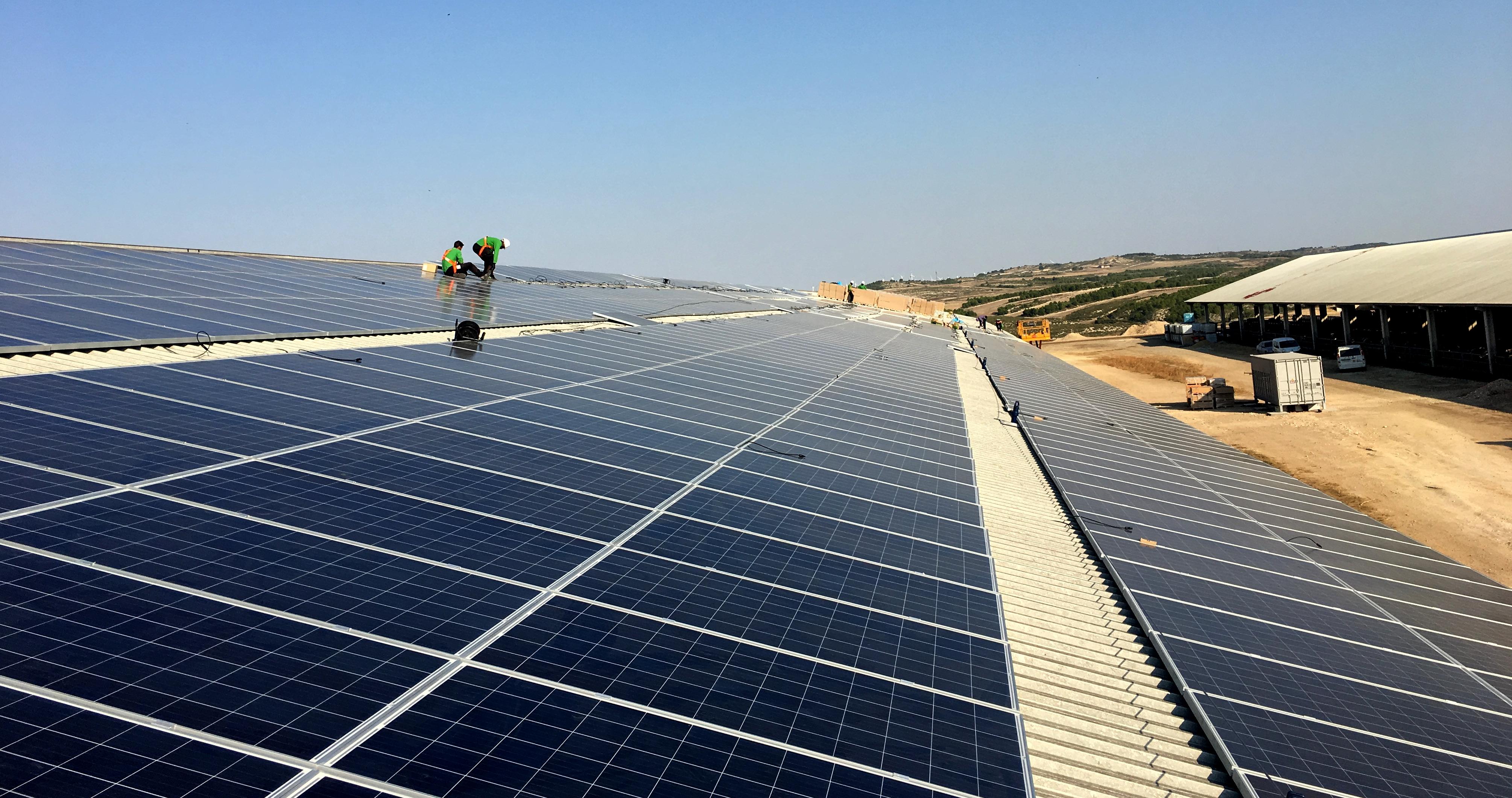 La Primera Fotovoltaica de la Subasta de Energías Renovables ya opera bajo el Régimen Retributivo Específico