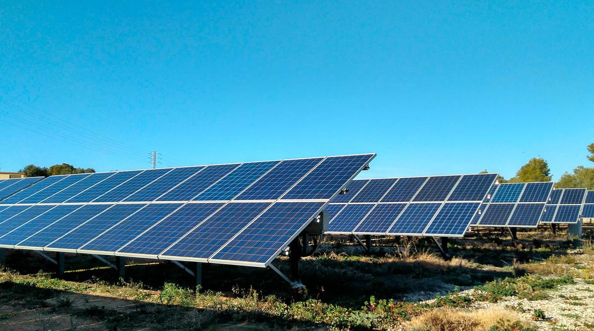Huerto Solar, Alba Renova