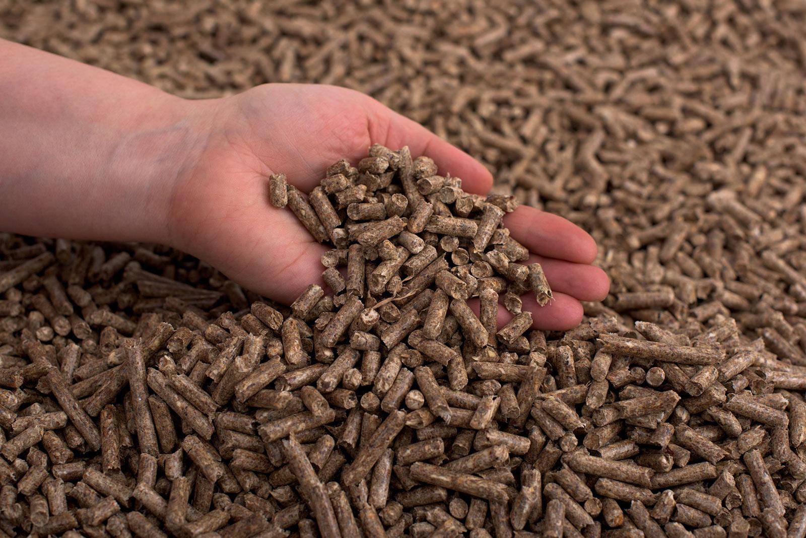 Alba Renova, pellets de madera